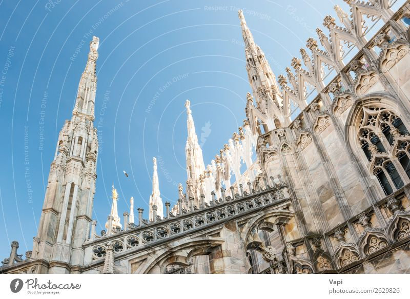 Marble statues - architecture on roof of Duomo cathedral Sky Vacation & Travel Old Blue Town Beautiful White Black Architecture Religion and faith Yellow