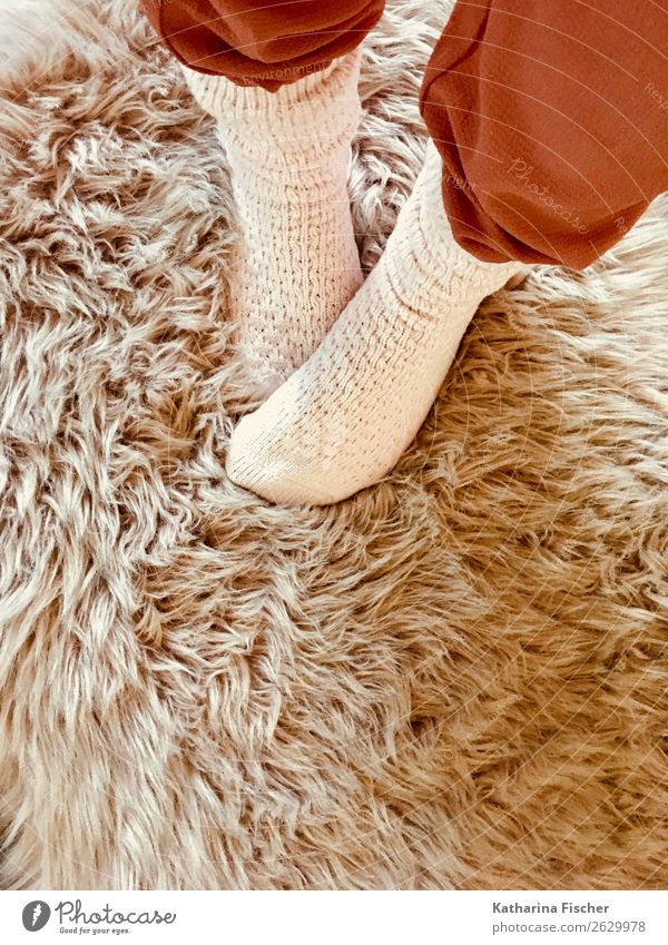 Socks on synthetic fur Legs Feet Pants Pelt Stand Brown Pink Red White Stockings Warmth Soft Winter Cuddling Cuddly Lifestyle knitted socks Cozy Colour photo