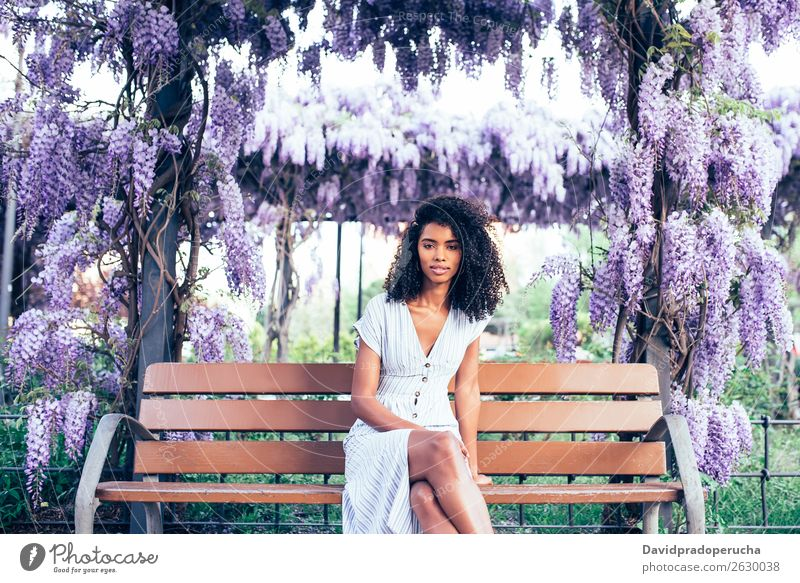 Happy young black woman sitting surrounded by flowers Woman Blossom Spring Lilac Portrait photograph multiethnic Black African Mixed race ethnicity Smiling