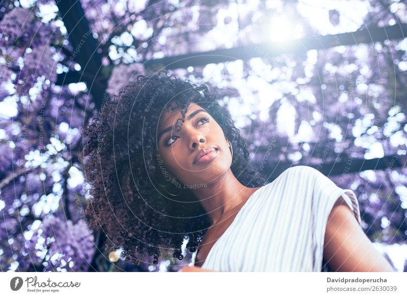 Young black woman surrounded by flowers Woman Blossom Spring Lilac Portrait photograph multiethnic Black African Mixed race ethnicity Smiling backlit from below