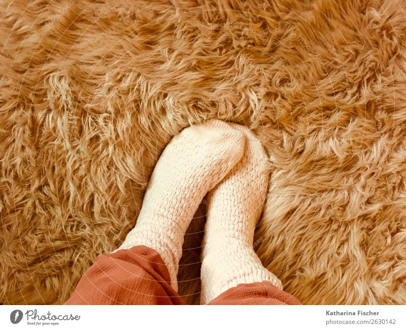 socks Well-being Feet Pelt Stand Warmth Soft Pink Red Stockings Coat color Hair and hairstyles Winter Cuddling Cuddly Wool socks synthetic fur Lifestyle