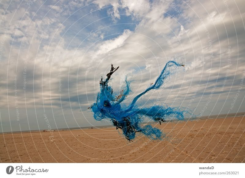Sky Nature Blue White Summer Beach Clouds Far-off places Yellow Environment Landscape Movement Sand Air Horizon Exceptional