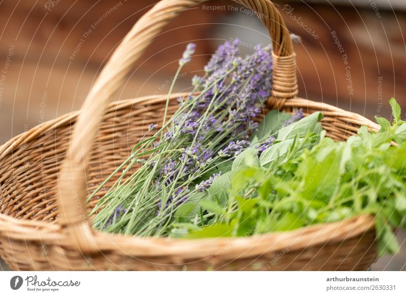 Basket with herbs from herb garden Food Herbs and spices Lavender Lavande harvest Mint Nutrition Organic produce Vegetarian diet Shopping Healthy Healthy Eating