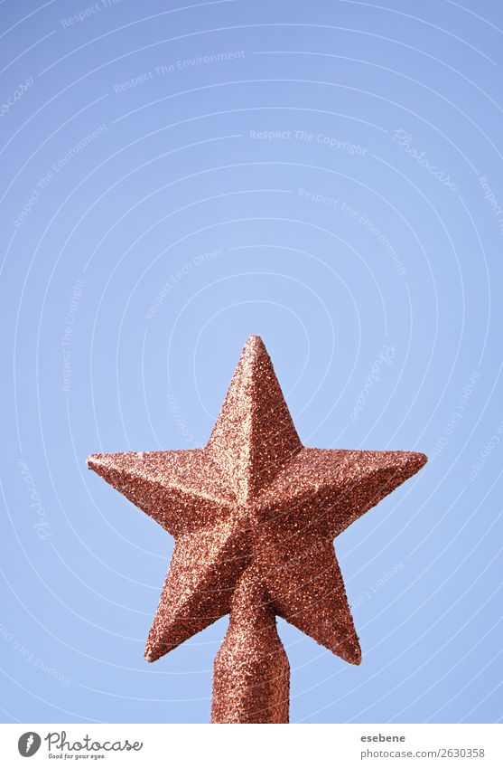 Christmas star on the treeChristmas star on the tree Winter Decoration Feasts & Celebrations Art Tree Glittering Happiness Bright New Blue Gold Red White Colour