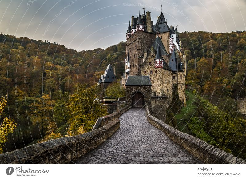 Vacation & Travel Forest Dark Autumn Senior citizen Building Germany Tourism Trip Adventure Historic Threat Tower Tourist Attraction Protection Hill