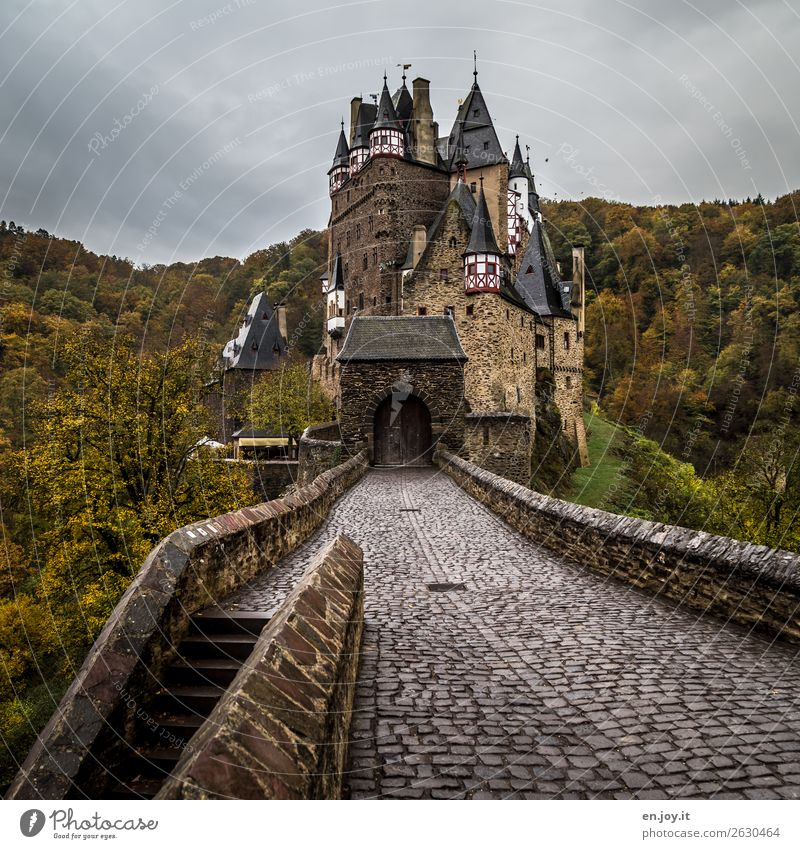 Appearance of old age seems to be defying old age. Vacation & Travel Trip Sightseeing Environment Nature Landscape Clouds Autumn Bad weather Forest Hill Castle