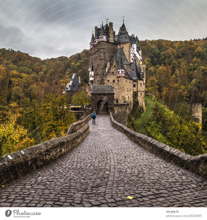 closed society Vacation & Travel Sightseeing Man Adults 1 Human being Storm clouds Autumn Bad weather Forest Hill Rhineland-Palatinate Germany Europe Castle