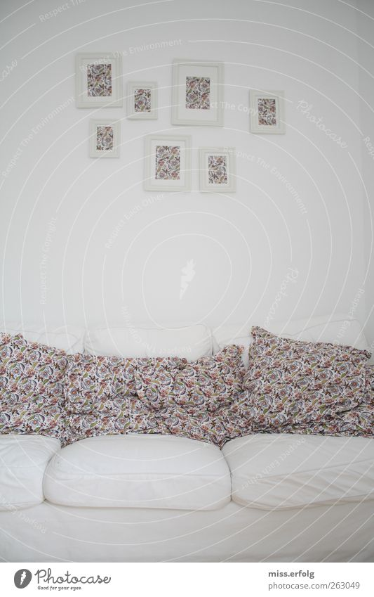 Are you alive? Sofa Living room Blossoming Looking Friendliness Happiness Hip & trendy Uniqueness Dream Esthetic Identity Arrangement Flowery pattern White