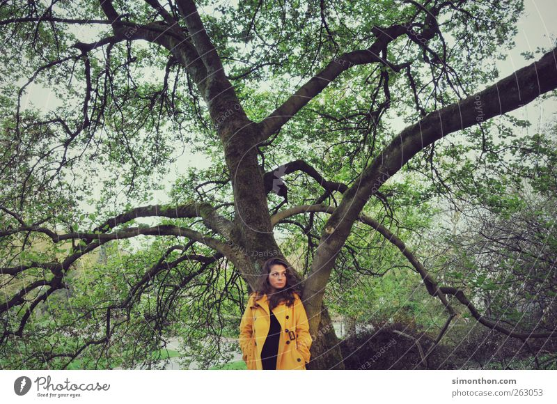 tree 1 Human being Uniqueness Yellow Center point Tree Park Retro Coat Raincoat Model Fashion Nature Beautiful Colour photo