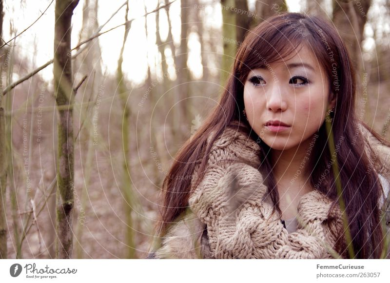 Girl lost in the woods. V Feminine Young woman Youth (Young adults) Woman Adults Head Face 1 Human being 18 - 30 years Nature Tree Forest Brunette Long-haired