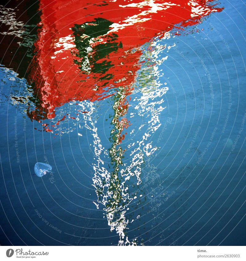 Transformation | Dissolution Phenomena Water Beautiful weather Waves Coast Navigation Sailboat Harbour Jellyfish Fluid Maritime Wet Blue Multicoloured Red Life