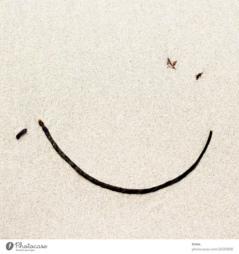 washed up surprise. Work of art Sculpture Sand Seaweed Beach Sign Line Facial expression Smiley Smiling Friendliness Happiness Happy Astute Funny Maritime
