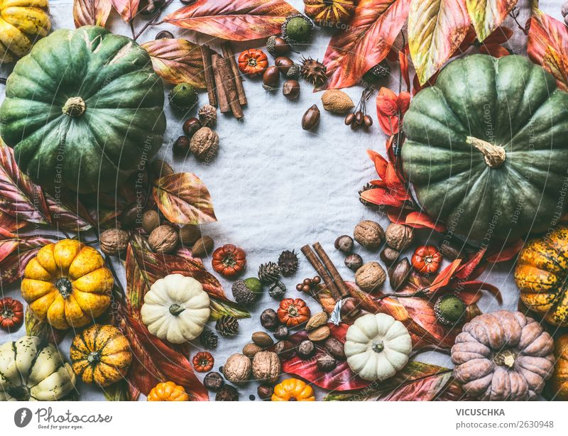 Background picture Lifestyle Autumn Style Design Decoration Shopping Vegetable Still Life Autumn leaves Autumnal Frame Difference Ornament Pumpkin Nut