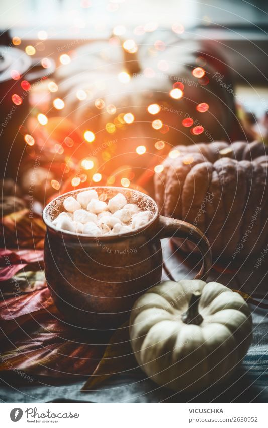 Cup with hot chocolate , MMarshmallow and pumpkin Beverage Hot drink Hot Chocolate Style Design Living or residing Flat (apartment) Decoration Autumn Still Life
