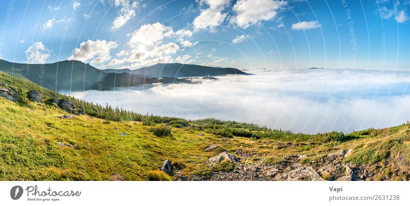 Panorama of green mountains in the clouds Sky Vacation & Travel Nature Summer Plant Blue Beautiful Green Landscape White Sun Tree Clouds Forest Mountain Black