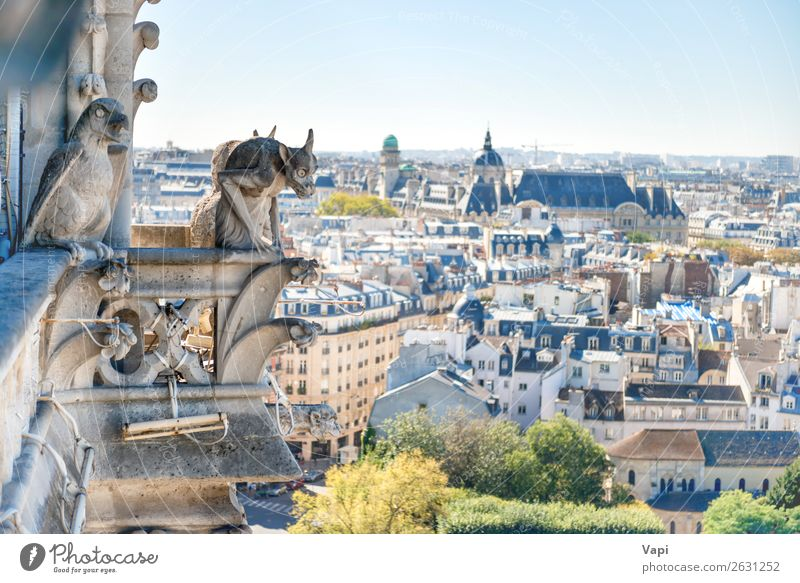 Gargoyle statue on Notre Dame de Paris Sky Vacation & Travel Old Blue Town Green Landscape White House (Residential Structure) Black Architecture