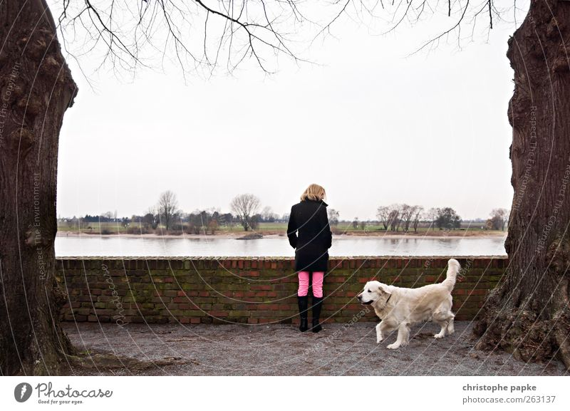 Human being Dog Sky Tree Animal Loneliness Far-off places Feminine Blonde Stand Infinity River bank Sightseeing Cloudless sky Rhine Vacation & Travel
