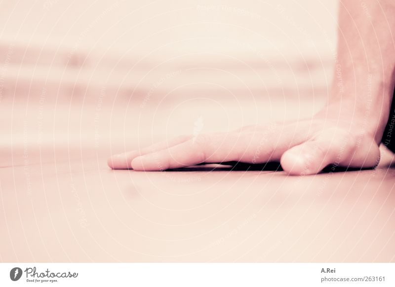 handy Masculine Hand 1 Human being Sit Support Fingers Colour photo Subdued colour Interior shot Detail Shallow depth of field