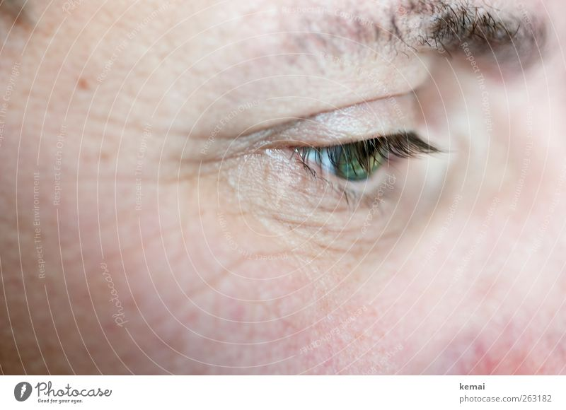 Chief Pretty Eyelash Human being Masculine Adults Life Skin Eyes Eyebrow 1 45 - 60 years Reading Looking Green Colour photo Subdued colour Interior shot