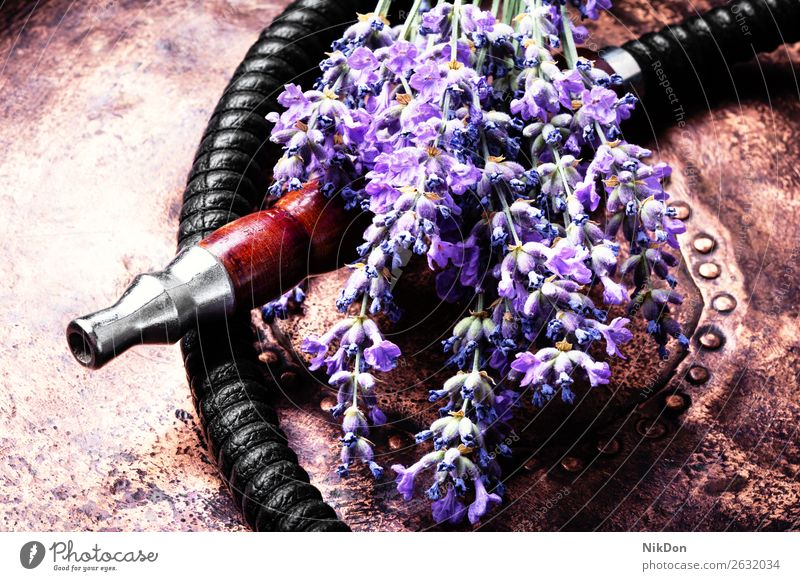 Asian tobacco hookah with lavender aroma flower shisha smoke herbal floral smoke shisha leaf dry mouthpiece hookah pipe relaxation hookah lounge arabic turkish