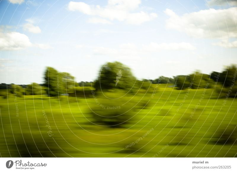 fast german summer II Harmonious Garden Environment Nature Landscape Plant Animal Air Sky Clouds Summer Climate Climate change Beautiful weather Tree Bushes