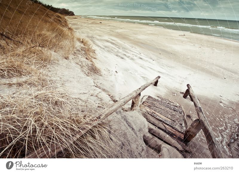 sea air Environment Nature Landscape Plant Elements Sand Water Sky Clouds Horizon Winter Climate Weather Grass Waves Coast Beach Baltic Sea Ocean Stairs