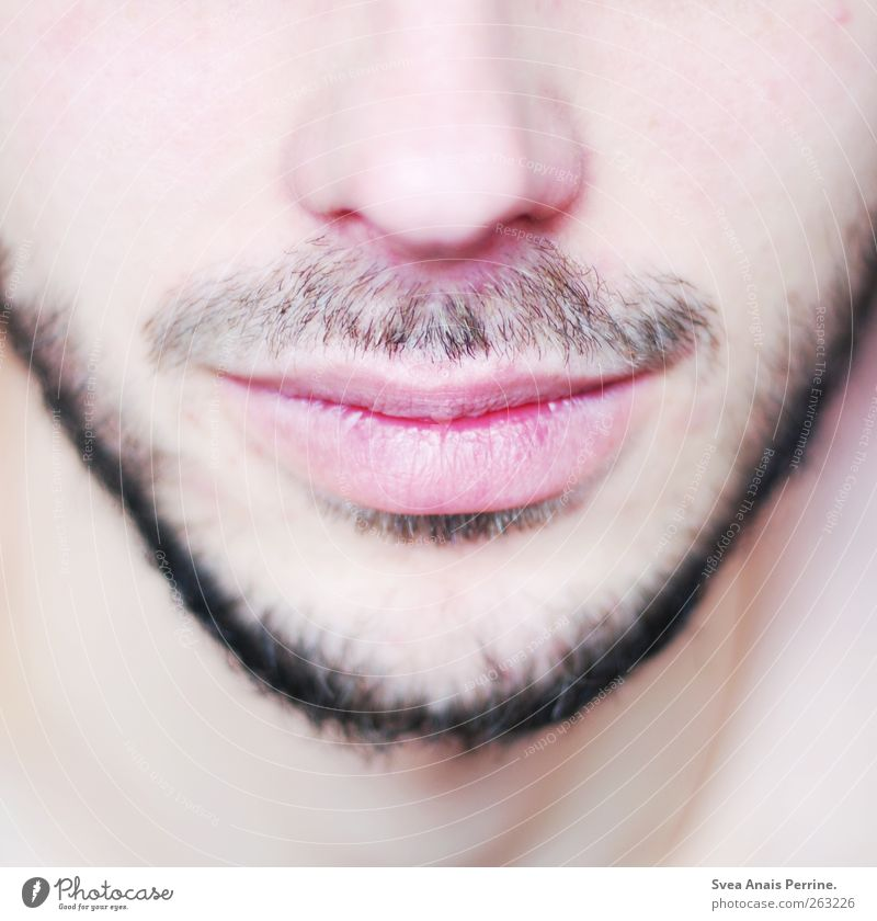 close up. Masculine Young man Youth (Young adults) Man Adults Nose Lips Chin Cheek 1 Human being 18 - 30 years Facial hair Moustache Designer stubble