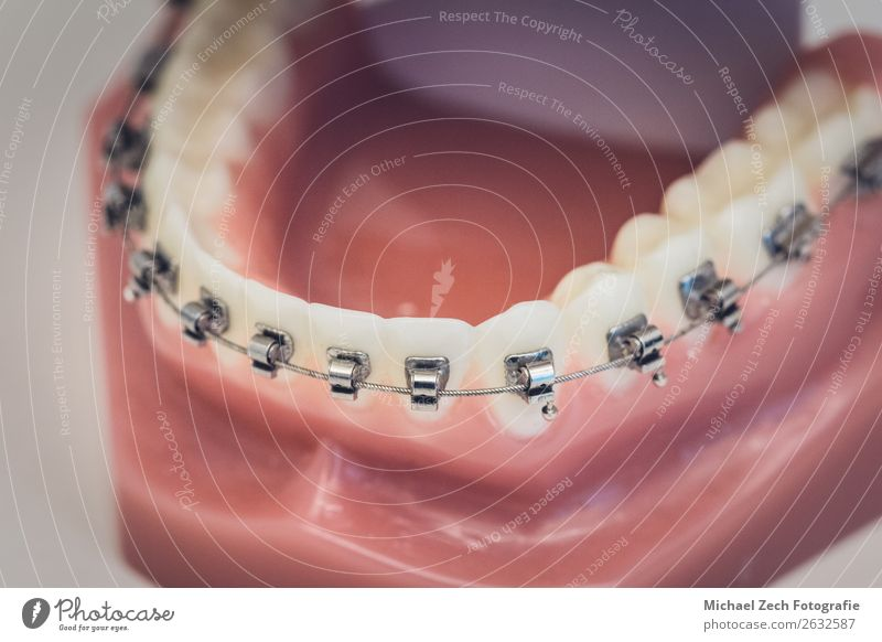 Detailed close up of dental denture or teeth on a table Design Illness Medication Mirror Doctor Office Hospital Teeth Clean White Dentist Dental instruments