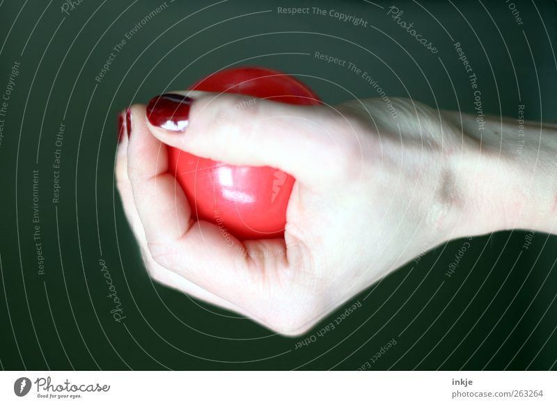 Hand Red Playing Emotions Power Contentment Leisure and hobbies Ball Plastic To hold on Protection Concentrate Fitness Sphere Brave Athletic