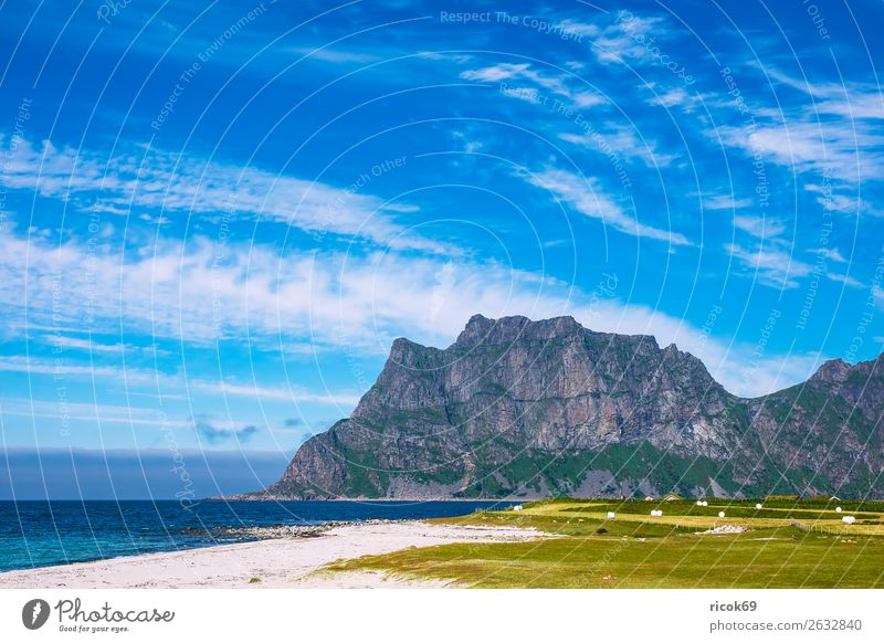 Utakleiv Beach on the Lofoten in Norway Relaxation Vacation & Travel Tourism Ocean Mountain Nature Landscape Water Clouds Grass Meadow Rock Coast Blue Green