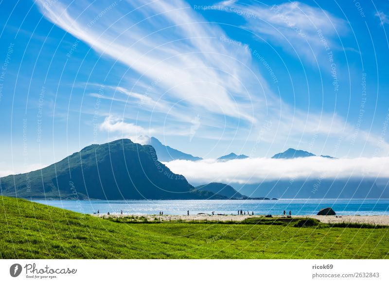 Haukland Beach on Lofoten in Norway Relaxation Vacation & Travel Tourism Ocean Mountain Nature Landscape Water Clouds Grass Meadow Rock Coast Blue Green Idyll