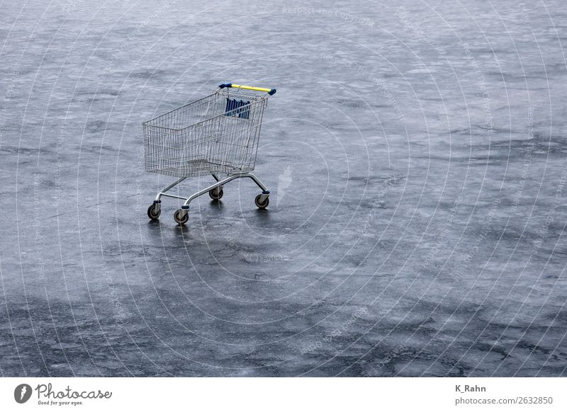 shopping tour Environment Winter Ice Frost Lake Shopping Trolley Cold Aggravation