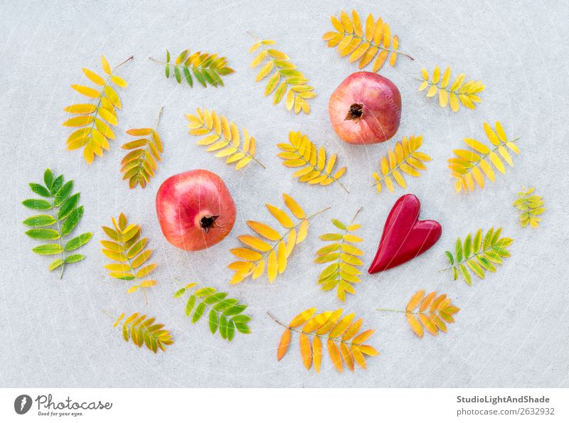 Pomegranates and golden ashberry tree leaves Fruit Beautiful Art Nature Autumn Weather Tree Leaf Concrete Heart Love Bright Natural Yellow Gold Gray Green Red