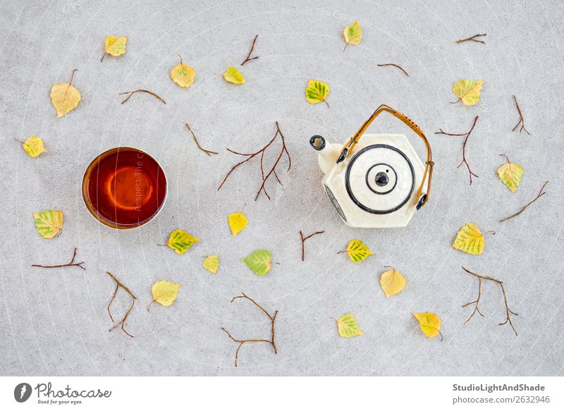 Warm tea on a cool autumn day Drinking Tea Beautiful Garden Nature Autumn Weather Warmth Leaf Terrace Concrete Natural Yellow Green Colour fall Fallen Teatime