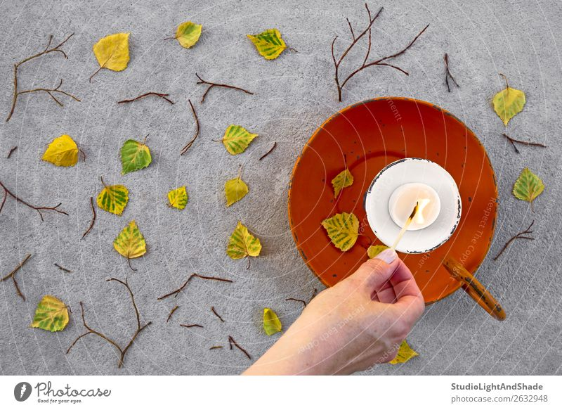 Lighting a candle for cozy autumn mood Woman Human being Nature Youth (Young adults) Old Young woman Colour Beautiful Green Hand Leaf 18 - 30 years Adults