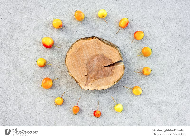 Apple tree stump with copy space surrounded by cherry apples Fruit Summer Garden Gardening Nature Autumn Tree Concrete Wood Bright Small Natural Wild Yellow