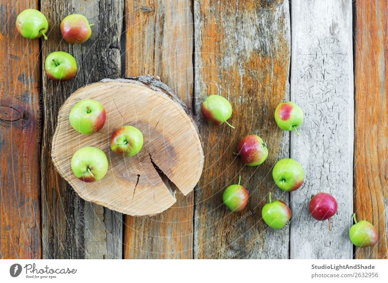 Apple tree stump and apples on rustic wooden background Fruit Beautiful Summer Garden Gardening Nature Autumn Tree Wood Old Natural Retro Wild Brown Green Red