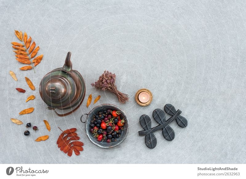 Rustic autumn composition with cozy candlelight Fruit Lifestyle Garden Kitchen Nature Landscape Autumn Warmth Tree Flower Leaf Candle Concrete Metal Old Natural