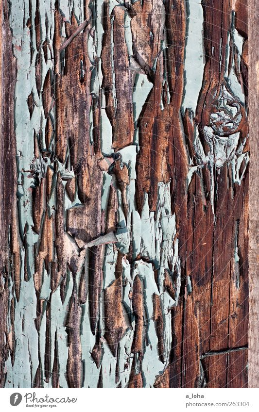 structure 3.3 Wood Line Old Broken Blue Brown Decline Transience Destruction Varnished Turquoise board Colour photo Exterior shot Detail Abstract Pattern