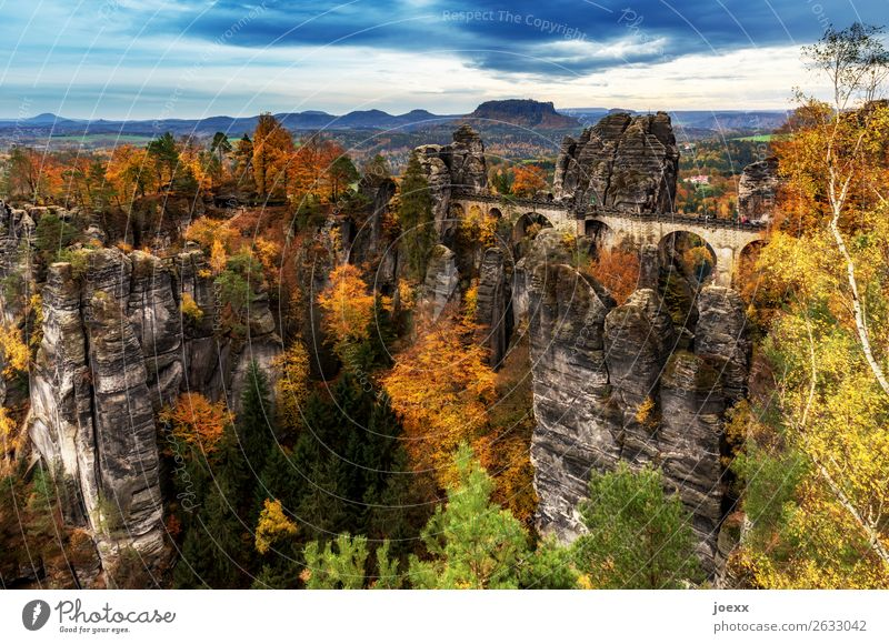 Elbe. Sand. Stone. Nature Landscape Autumn Beautiful weather Forest Mountain Wall (barrier) Wall (building) Tourist Attraction bastei bridge Tall Blue Brown