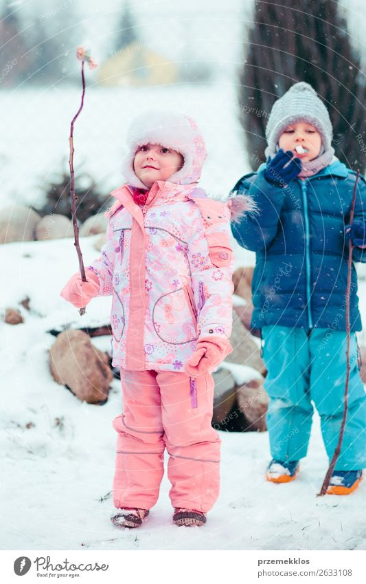 Children enjoying marshmallows prepared over campfire Food Dessert Candy Lifestyle Joy Happy Winter Snow Winter vacation Human being Girl Boy (child)