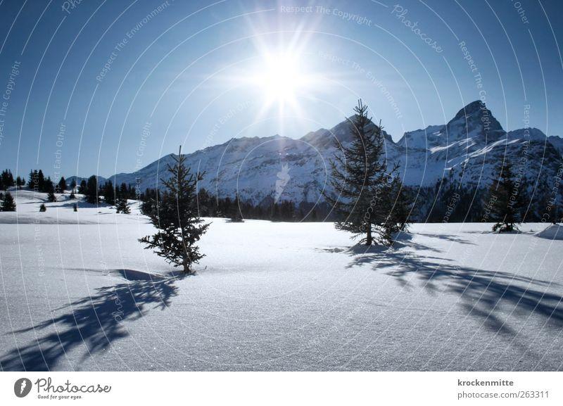 Sky Nature Blue Tree Plant Sun Winter Environment Landscape Snow Mountain Illuminate Alps Beautiful weather Peak Switzerland