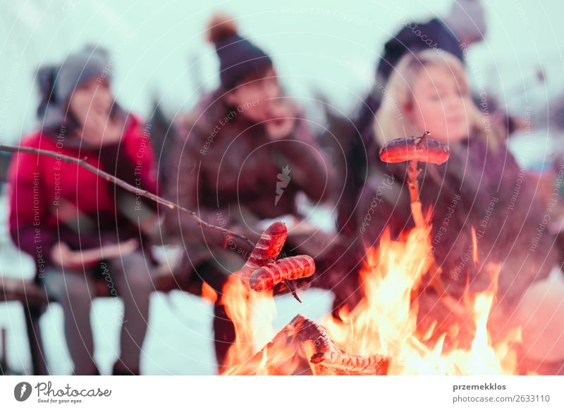 Family roasting sausages gathered around campfire Woman Human being Youth (Young adults) Joy Winter 18 - 30 years Food Lifestyle Adults Snow Family & Relations