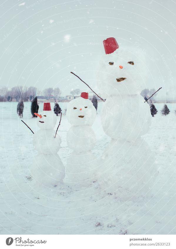 Three snowmen standing in the garden Lifestyle Joy Winter Snow Snowfall Freeze To enjoy Make Cute White Cold Backyard enjoyment Seasons snowing Snowman stick