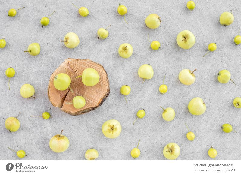 Wild apples and apple tree stump on concrete background Fruit Apple Summer Garden Gardening Nature Autumn Tree Concrete Wood Natural Yellow Gray Green Colour