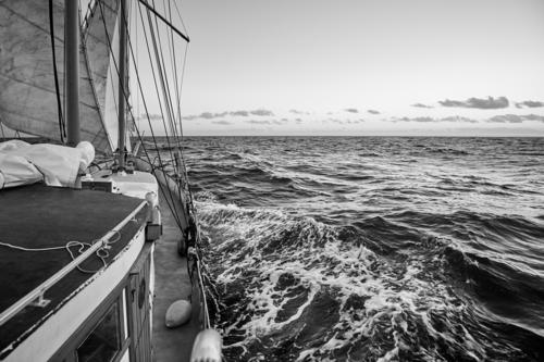Old sailing ship cruise. Vacation & Travel Adventure Freedom Cruise Ocean Waves Sports Sailing Horizon Weather Wind North Sea Baltic Sea Transport Yacht