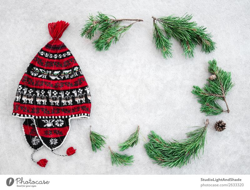 Red winter hat and green pine branches Nature Christmas & Advent Plant Colour Green White Tree Winter Warmth Natural Style Copy Space Fashion Gray Decoration