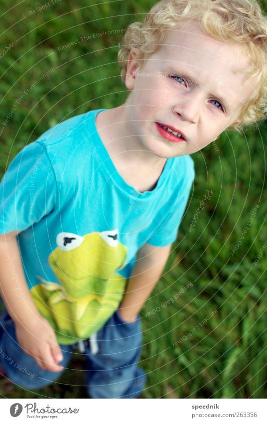 Human being Child Blue Green Beautiful Summer Animal Boy (child) Warmth Infancy Blonde Hiking Masculine Trip Growth Observe