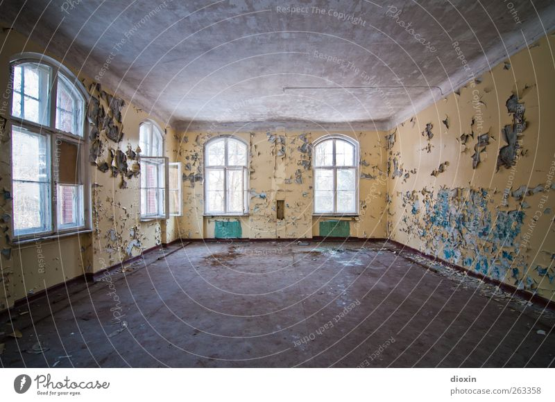 free space Deserted House (Residential Structure) Manmade structures Building Architecture Sanitarium Wall (barrier) Wall (building) Window Old Authentic Broken