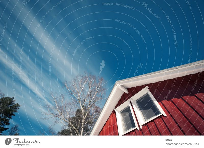 Fleeting roof Vacation & Travel Living or residing Flat (apartment) House (Residential Structure) Environment Sky Climate Beautiful weather Tree Hut Facade